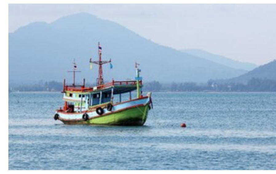 民间渔港企业:吁请政府出台有利于行业发展的法规和政策