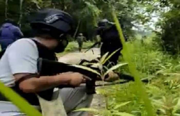 我国军警与西巴布亚恐怖分离主义组织发生枪战