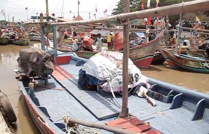 渔民因害怕恶劣天气不愿出海,那么鱼价上涨了!