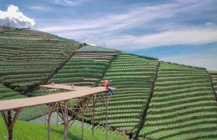 我国美丽风景!享受马吉冷山景梯田游